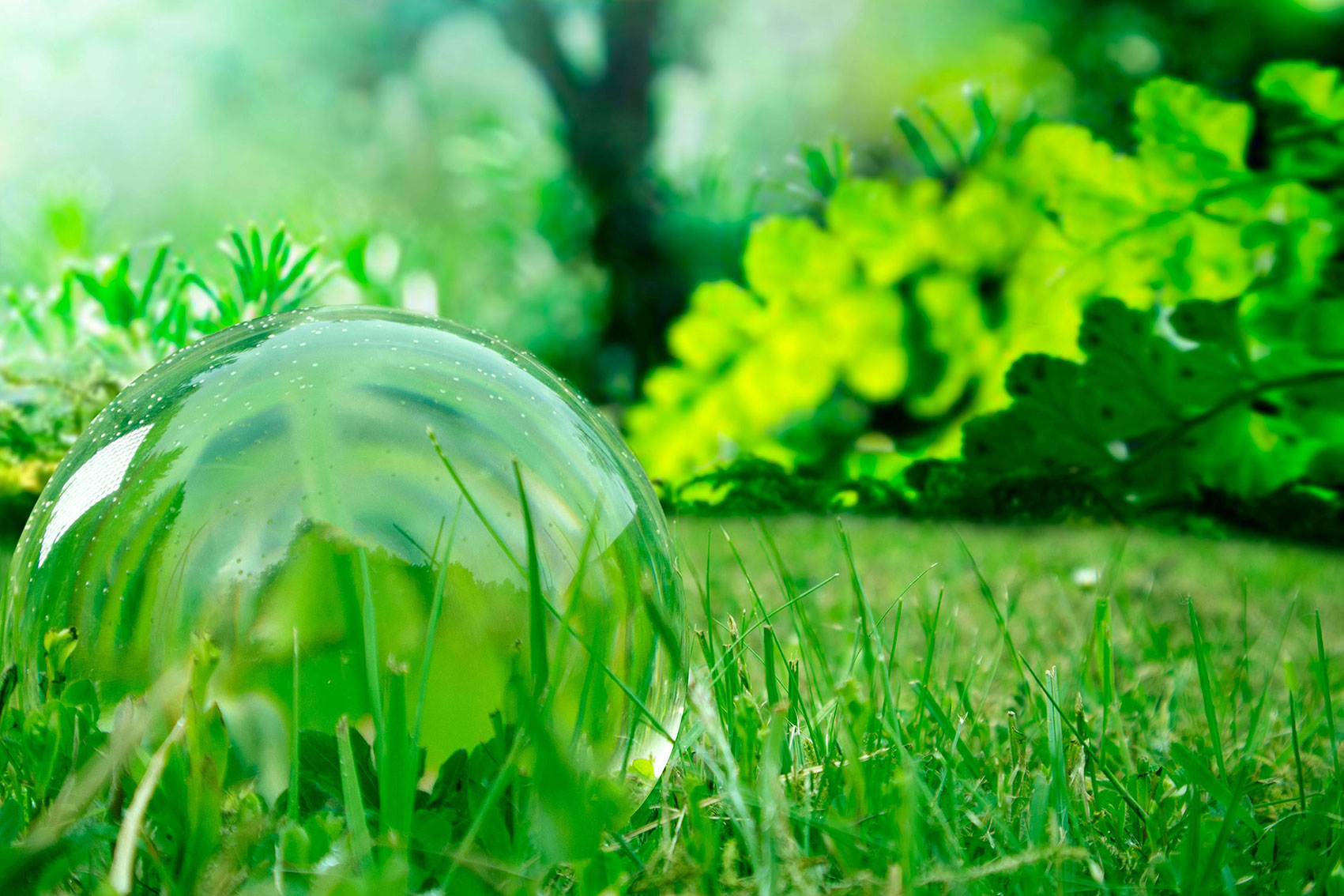 clear acrylic sphere sitting in grass